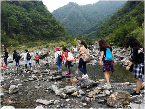 Giltbridge Chengdu Branch Had a Journey to Panda Valley Scenic Spot in 2018